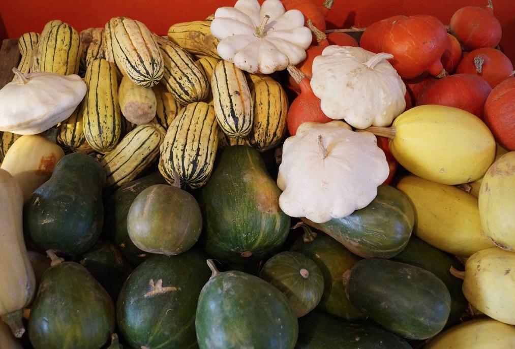 Claire, maraichère à la Ferme des Tilleuls, présente sa production de légumes bio